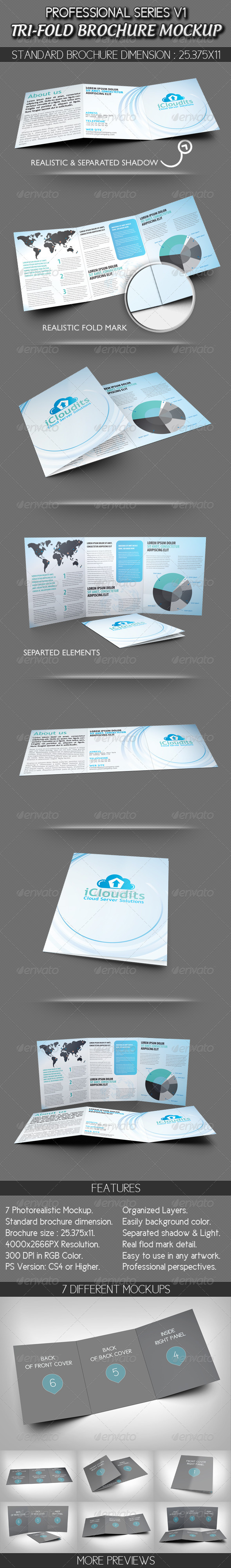 Professional Tri-fold Brochure Mockup V1
