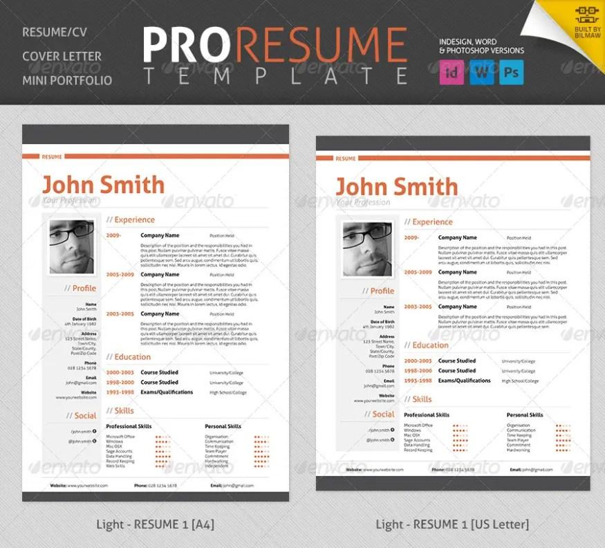 Professional Resume/CV
