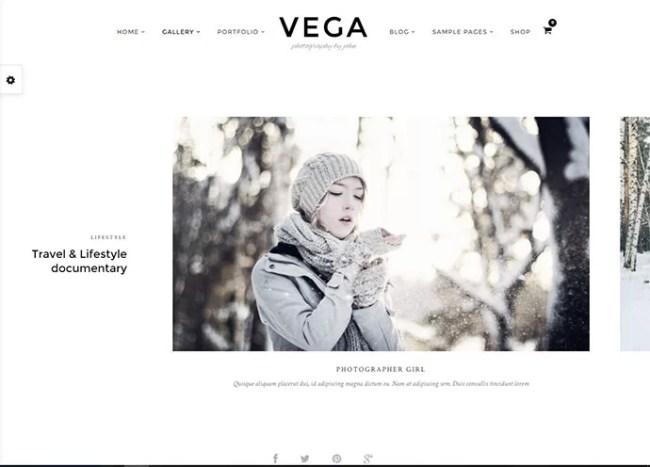Vega Theme