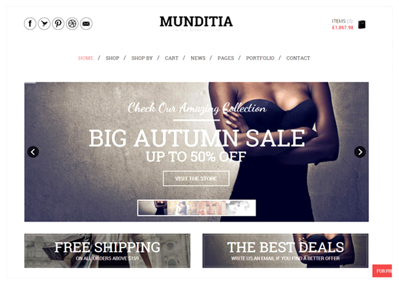 22+ Free eCommerce WordPress Themes with Shopping Cart