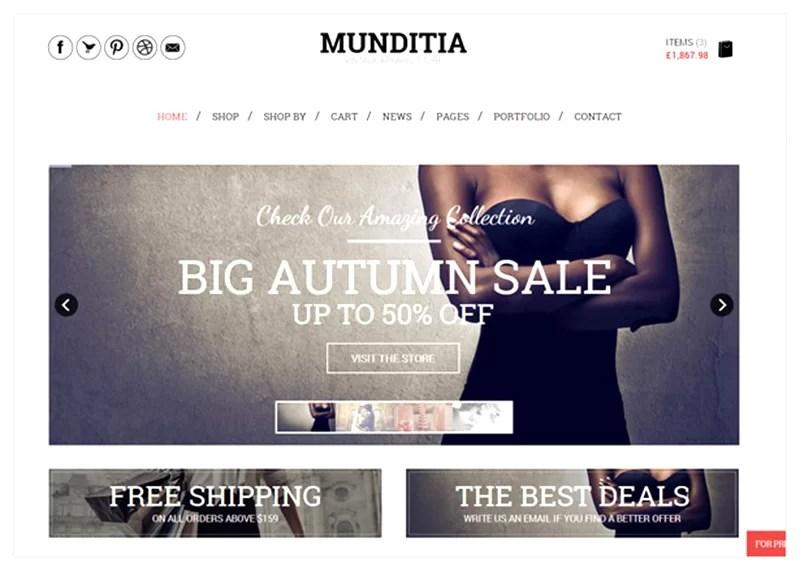 great premium ecommerce wordpress themes for web designers