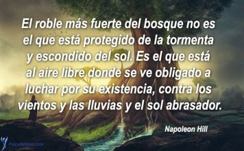 frases-napoleon-hill