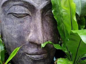 El budismo invita a comprobar sus hipótesis sobre la mente.