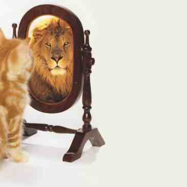 ¿Qué es la autoestima y cómo se forma?
