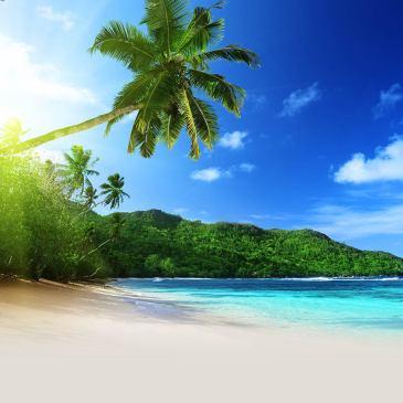 Cómo disfrutar en vacaciones