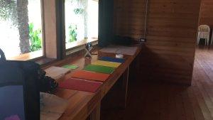 actividades-talleres-psicologos-en-costa-rica