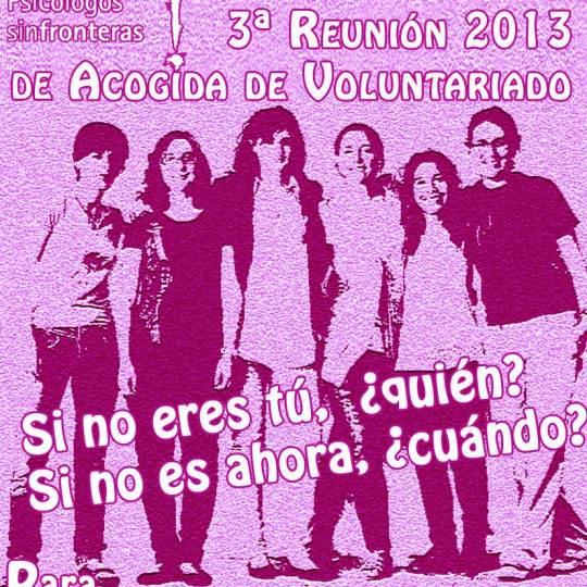 Voluntario 2013