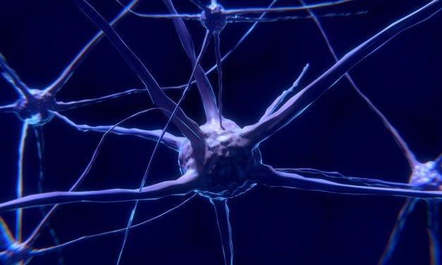 RASGOS NEUROCOGNITIVOS DE LA ENFERMEDAD DE PARKINSON