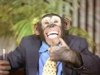 Primate y civilización