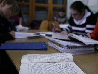 Studiu individual