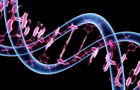 Protein Mühendisliği Nedir?