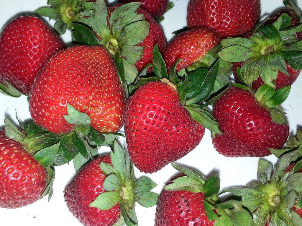Tuesday Tip: Strawberries on Hot Summer Days 1