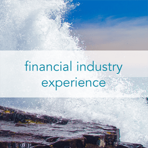 Financial Industry Experience