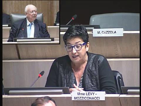 Annie Levy Mozziconacci intervient sur la DSP de la restauration scolaire