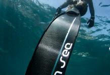 Go n sea shark action