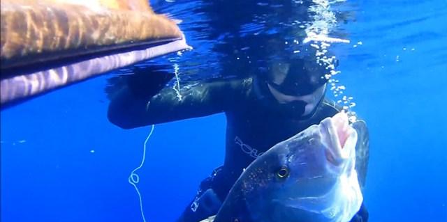 aleix segura Vendrell, un regard sur la pêche profonde