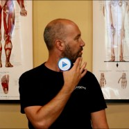 Quick Tip: Do you know how to stretch the rotator muscles in your neck?