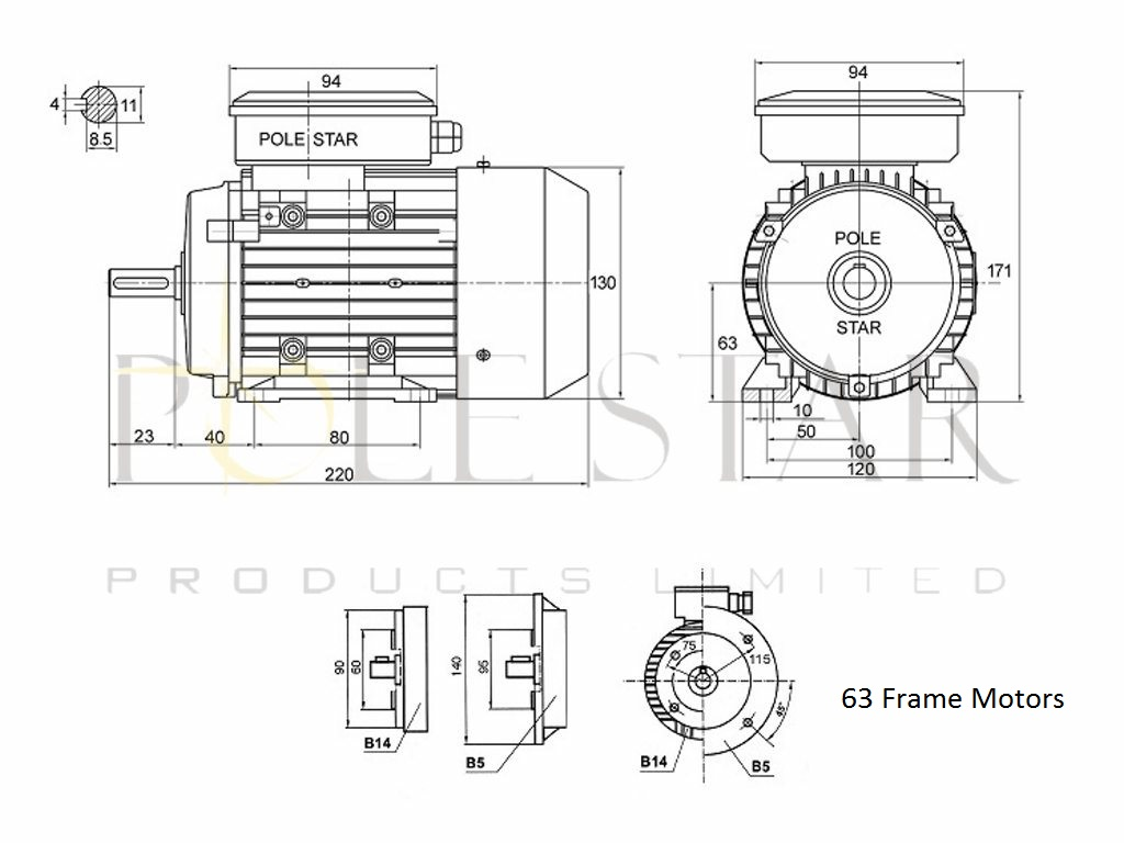 Industrial Electrical Motors Pole Star Products