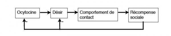 Schéma de la pulsion socio-affective