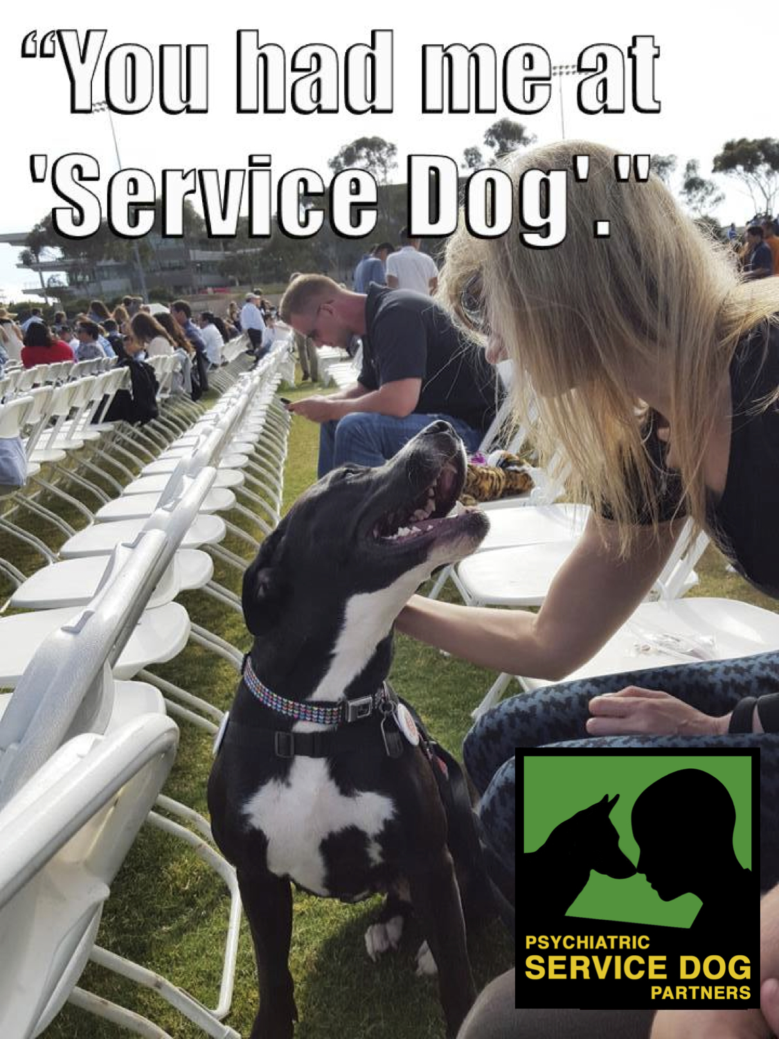Can You Get A Service Dog For Free