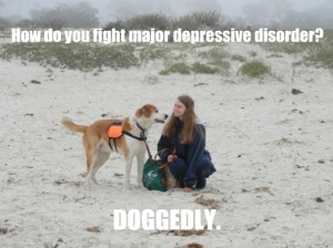 """#PSDPrompt meme…Picture: young woman on a beach, smiling with a service dog. Text: """"How do you fight major depressive disorder? Doggedly."""""""