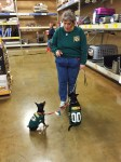 A woman wearing a Green Bay Packers shirt stands in an empty area in a pet store, looking down and holding her right index finger up. She holds a leash in her left hand, connected to a leash splitter. At the ends are two small black and tan dogs wearing Green Bay Packers jerseys as they sit and look up at the woman.