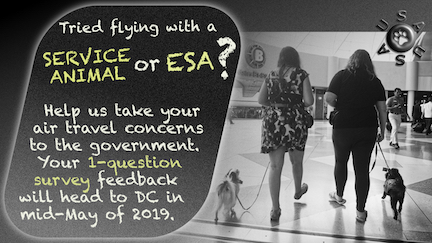 "Graphic with text. Black and white picture: Two women with small, heeling service dogs walk through an expansive area in an airport with their backs to the camera. A USAUSA logo with a paw print is in the upper right. Text: ""Tried flying with a service animal or ESA? Help us take your air travel concerns to the government. Your 1-question survey feedback will head to DC in mid-May of 2019."
