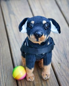 A tiny plush Doberman wearing a vest sits on a wooden deck looking up expectantly at the camera, ears raised outward as if ready for a hug, with a colorful ball at its feet.