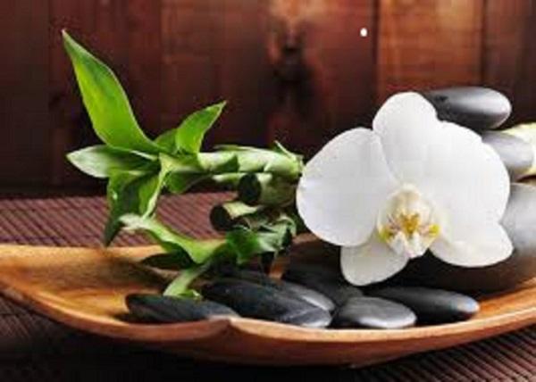 Spiritual Aura Cleansings