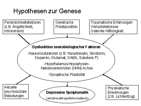 depressionhypothese.jpg
