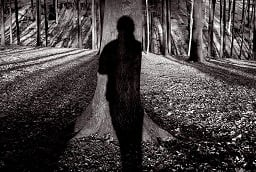 forest shadow figure