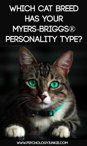 Which cat has your #MBTI type? #INFJ #INFP #ENFJ #ENFP #ISTJ #ISFJ #ENTJ #INTP #ENTP #ESFJ