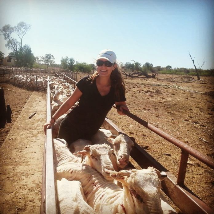 My time on a sheep station in Western Queensland