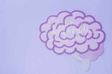 purple brain concept