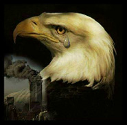 Eagle_Crying