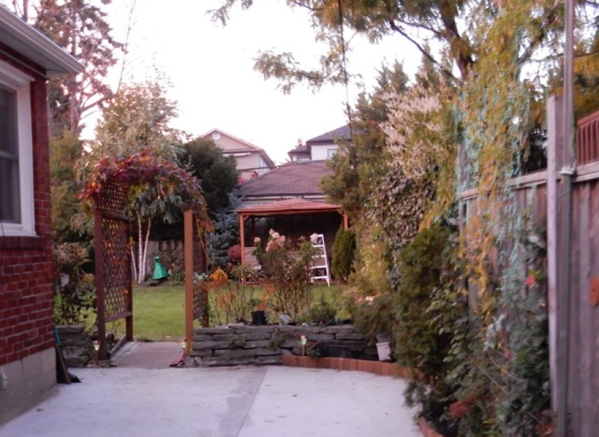 house-side-yard