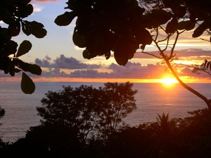 sunset-trees