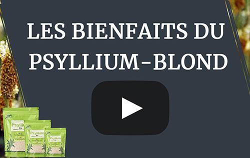 Les bienfaits du psyllium blond en vidéo