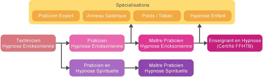 Nos formations en hypnose : schema_cursus_hypnose