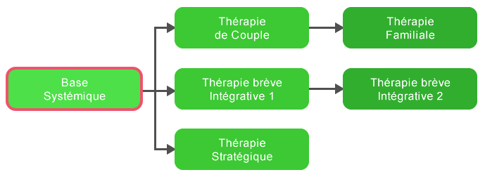 Formation Praticien en Thérapie Brève Systémique
