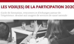 Le programme 2020 de la formation les voix(es) de la participation