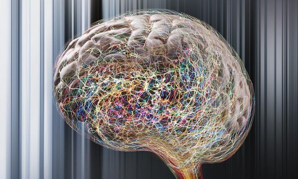 нейронные пути
