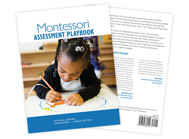 Montessori Assessment Playbook