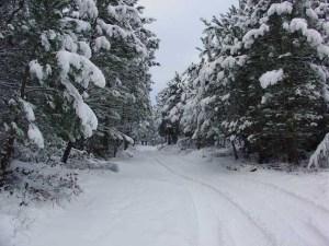 Previsão de neve para 12 distritos/ Foto: Direitos Reservados