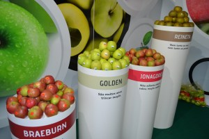A maçã foi a rainha do certame / Foto: Salomé Ferreira