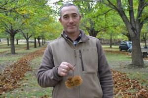 Daniel Azevedo, produtor de castanha em Sernancelhe / Foto: Salomé Ferreira