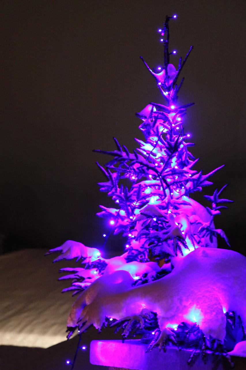 Purple Christmas Tree Free Stock Photo Public Domain