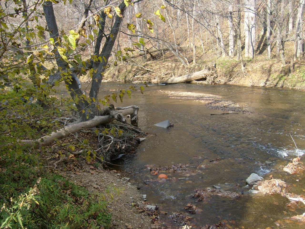 Image result for running creek