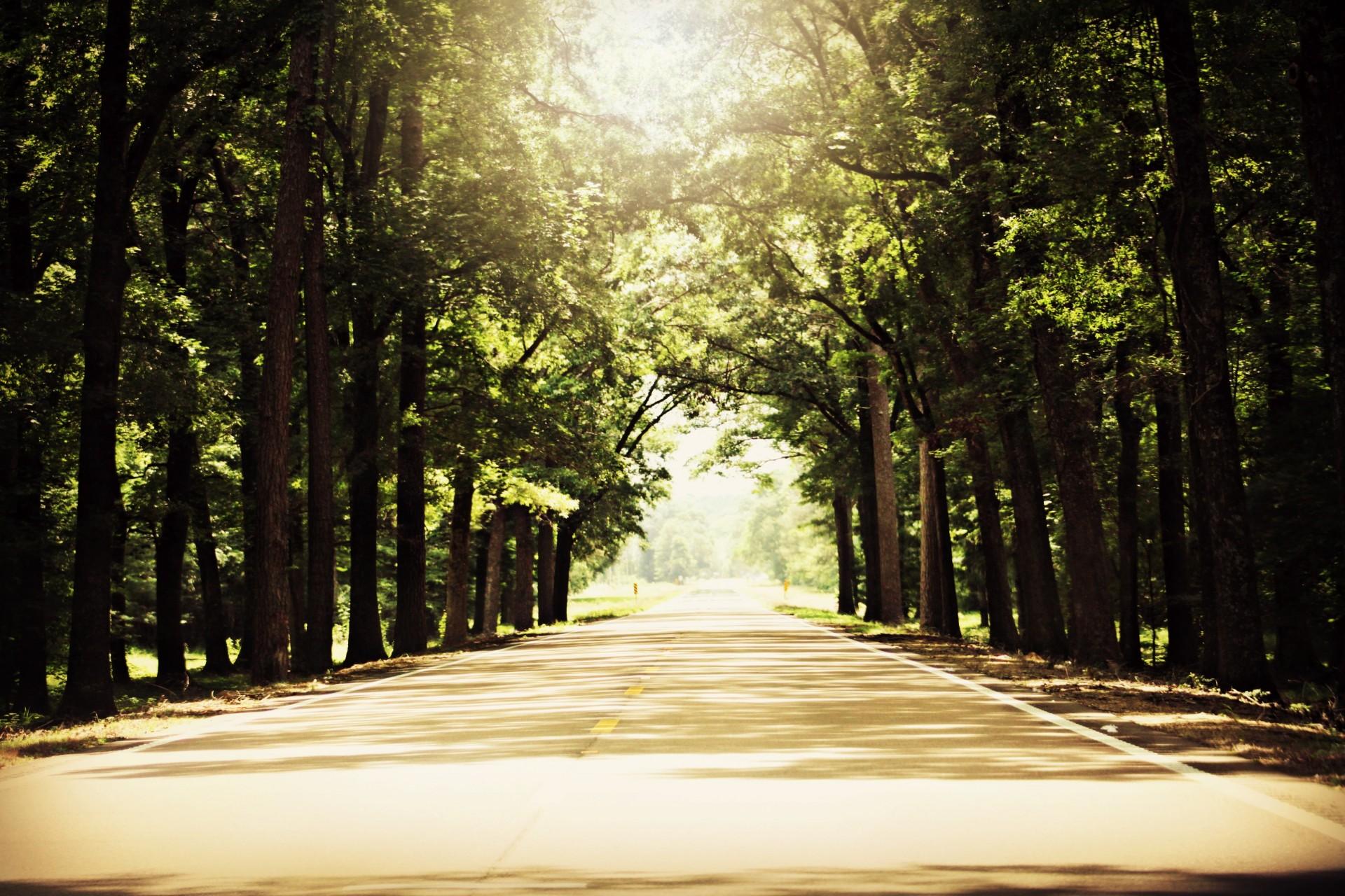 Sunny Road