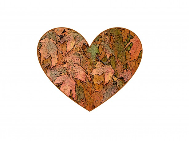 Image result for thanksgiving heart
